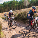 Photo of Brian HEALY at Cannock Chase