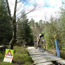 Photo of Chris LEVER at Dalby Forest