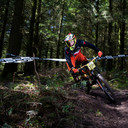 Photo of Brook MITCHELL at Triscombe
