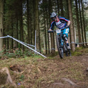 Photo of Cy CULPIN at Forest of Dean