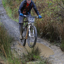 Photo of David WALKER (vet) at Dyfi Forest