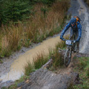 Photo of Peter RICHARDSON at Dyfi Forest