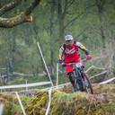 Photo of Robert SMITH (elt) at Dyfi Forest