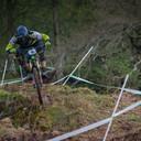 Photo of Marco OSBORNE at Dyfi Forest