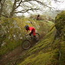 Photo of Patrick CAMPBELL-JENNER at Dyfi Forest