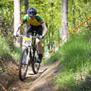 Photo of Malachy CURRY at Shouldham Warren