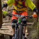 Photo of Dave WILLS at Graythwaite