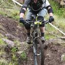 Photo of Nigel DUNNE (vet) at Ballyhoura