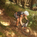 Photo of Mike TOMLINSON at Grogley Woods, Bodmin