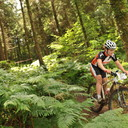 Photo of Evie LANE at Grogley Woods, Bodmin