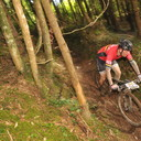 Photo of Steve HODGSON (vet) at Grogley Woods, Bodmin