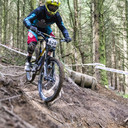 Photo of Tom WHITEHEAD at Revolution Bike Park, Llangynog