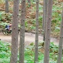 Photo of Tom OGDEN at Swinley Forest