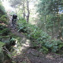 Photo of James DIGGES LA TOUCHE at Forest of Dean