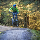 Photo of Dale CROW at Gisburn Forest
