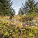 Photo of Jack REDGATE at Kielder Forest