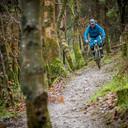 Photo of Sean O'SULLIVAN at Bike Park Ireland