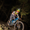 Photo of Will WILD at Forest of Dean