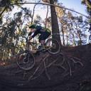 Photo of Chris LAMLEY at Rogate