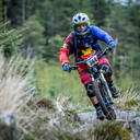 Photo of Mario TORGA at Ballinastoe Woods, Co. Wicklow