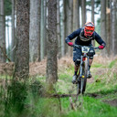 Photo of Declan BRADY at Ballinastoe Woods, Co. Wicklow