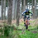 Photo of Mark GRAHAM at Ballinastoe Woods
