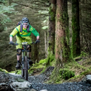Photo of Gerard HEFFERNAN at Ballinastoe Woods