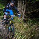 Photo of Andrew BENT at Ballinastoe Woods