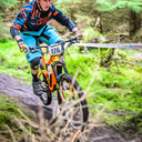 Photo of Brendan FOLEY at Ballinastoe Woods, Co. Wicklow