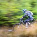 Photo of Darren KIRK at Ballinastoe Woods, Co. Wicklow