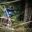 Photo of Aidan HAWKINS at Ballinastoe Woods, Co. Wicklow