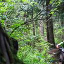 Photo of Tom ALDERSON at Fraser Valley, BC