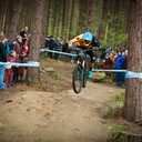 Photo of Phil ATWILL at Greno Woods