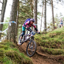 Photo of Rider 246 at Glentress