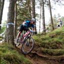 Photo of Rider 329 at Glentress
