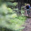 Photo of Andrew KEEN at Kamloops, BC