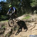 Photo of Rider 35 at Pemberton, BC