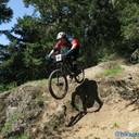 Photo of Rider 21 at Pemberton, BC