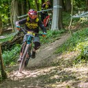 Photo of Regan REPMAN at East Meon