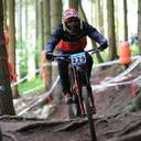 Wellmann Bikes Roots Rain