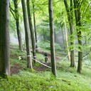 Photo of Jordan COLCLOUGH at Queen Elizabeth Country Park