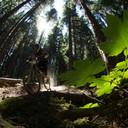 Photo of Art DUKE at Kicking Horse, Golden, BC