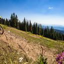 Photo of Keegan FRY at Silver Star, BC