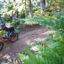 Photo of Jen HODGSON at Revelstoke, BC
