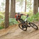 Photo of Paul WILKINSON (vet) at Swinley Forest