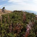 Photo of Carter KRASNY at Sun Peaks, BC