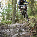 Photo of Hugo MORRISON at Grizedale Forest