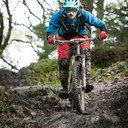 Photo of Daniel BRAUND at Grizedale Forest