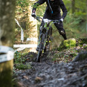 Photo of Andrew CLAYTON (sen) at Grizedale Forest