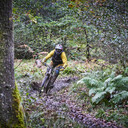 Photo of Andrew BLAND at Grizedale Forest
